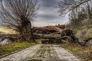 route bloquée merveilleusement imparfaite